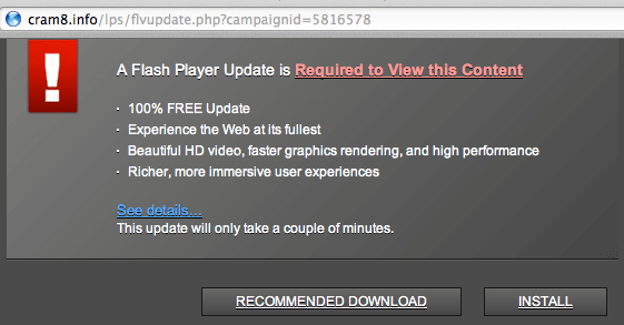 Update Flash Player - How to do it Safely 07