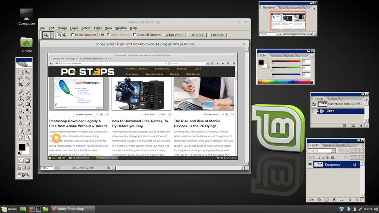 linux mint vs windows 10 gaming